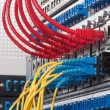 Fiber Optic cables connected to an optic ports and UTP Network c — Stock Photo #76319855