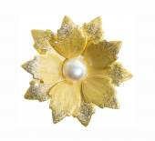 Flower brooches on white background — Stock Photo