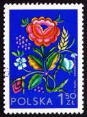 Postage stamp Poland 1974 Rose Flower — Stock Photo