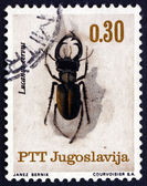 Postage stamp Yugoslavia 1966 Stag Beetle, Insect — Stock Photo