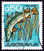 Postage stamp Yugoslavia 1967 Northern Pike, Bird — Stock Photo