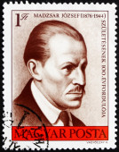 Postage stamp Hungary 1976 Jozsef Madzsar, Physician — Stock Photo