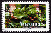 Postage stamp France 2008 Plants, Vacations — Stock Photo