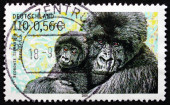 Postage stamp Germany 2001 Mountain Gorilla — Stock Photo