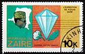Postage stamp Zaire 1979 Diamond and Cotton Boll — Stock Photo