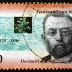 ������, ������: Postage stamp Germany 1996 Ferdinand von Mueller Botanist