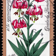 Postage stamp Germany 1978 Turk's Cap Lily, Alpine Flower — Stock Photo #54144605