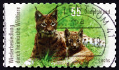 Postage stamp Germany 2012 Northern Lynx, Animal — Stock fotografie