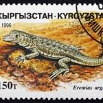 Постер, плакат: Postage stamp Kyrgyzstan 1996 Steppe runner Lizard