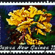 Postage stamp Papua New Guinea 1982 Distichopora, Coral — Stock Photo #54706063