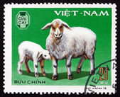Postage stamp Vietnam 1979 Ewe, Lamb, Domestic Animal — Stock Photo
