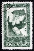 Postage stamp North Korea 1965 Silkworm Moth and Cocoon — Stock Photo