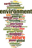 Environment word cloud — Stock Vector