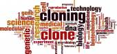 Cloning word cloud — Stock Vector