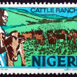 Postage stamp Nigeria 1974 Cattle Ranching — Stock Photo #64972437