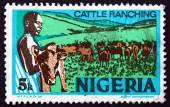 Postage stamp Nigeria 1974 Cattle Ranching — Stock Photo
