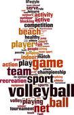 Volleyball word cloud — Vector de stock