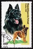 Postage stamp Chad 1971 Belgian Shepherd, Dog — Stock Photo