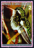 Postage stamp Equatorial Guinea 1977 Colibri, South American Bir — Stock Photo