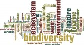 Biodiversity word cloud — Stock Vector