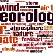 Meteorology word cloud — Stock Vector #68039593