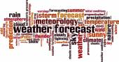 Weather forecast word cloud — Stock Vector