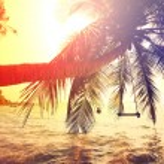 Tropical beach — Stock Photo #52270663