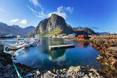 Lofoten island — Stock Photo