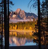 Autumn in Grand Teton — Stock Photo