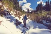 Поход в ледник — Стоковое фото