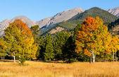 Herfst in bergen — Stockfoto