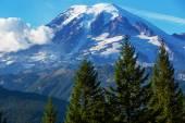 Mt.rainier — Stockfoto