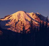 Mt.rainier — ストック写真