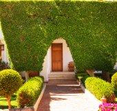 装飾的な庭 — ストック写真