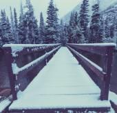 Glacier Park in winter — Fotografia Stock