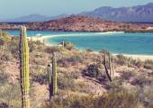 Baja California — Foto Stock