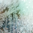 Frozen window — Stock Photo #57518711