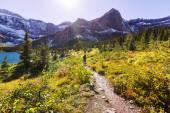 Hike in Glacier — Stock Photo