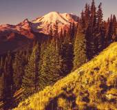 Mt.Rainier — Zdjęcie stockowe
