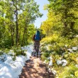 Hike in Glacier — Stock Photo #60546035