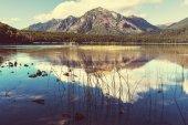 Patagonia landscapes in Argentina — Foto de Stock
