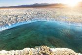 Salinas salty lake in Argentina — Stock Photo
