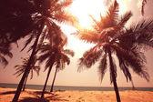 Serenity tropical beach — Stock Photo
