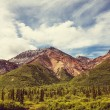 Mountains on Alaska panorama — Stock Photo #67956805