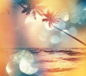 Praia tropical de serenidade — Fotografia Stock