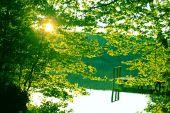 Quiet green Lake — Stock Photo