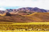Landscapes of Northern Argentina — Stock Photo