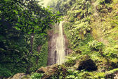 Waterfall in Indonesian jungle — Stock Photo
