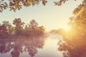 Fog on the river in summer — Stock Photo