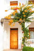 Door of house with garden — Stock Photo